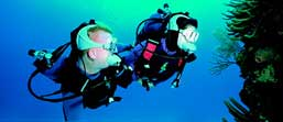 How is sound used to communicate underwater? – Discovery of