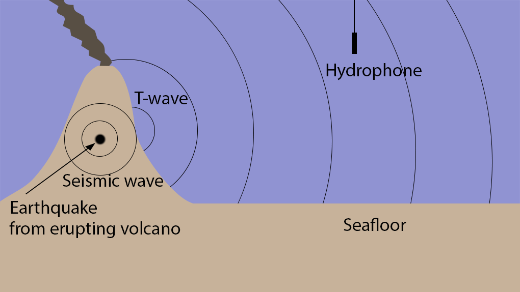 How is sound used to study underwater volcanoes discovery of diagram showing the creation of t waves from seismic waves produced by a volcanic eruption and detection by a hydrophone image credit uri ccuart Images