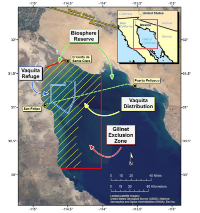 Map showing vaquita distribution and other zones in the Gulf of California.