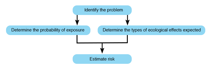 Schematic of risk assessment procedures