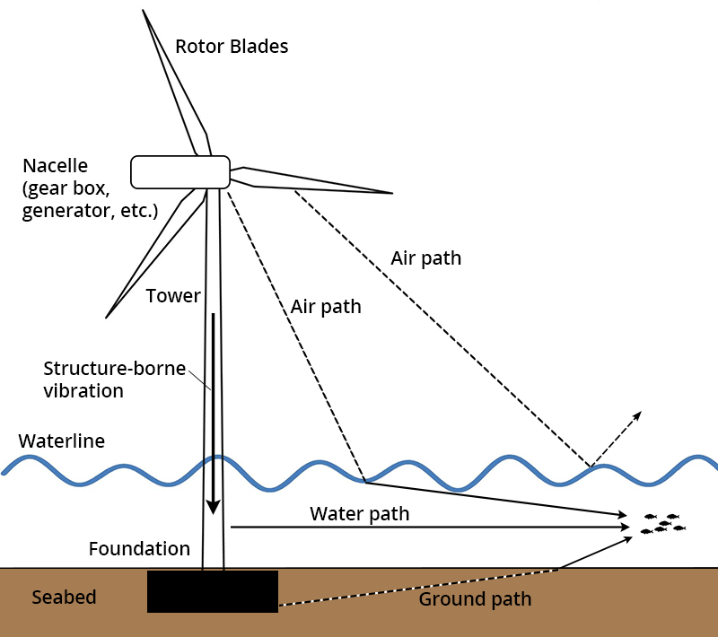 Diagram showing a wind turbine on its foundation in the seabed with arrows showing the sound travel pathways. Travel pathways include from the nacelle down the tower to the foundation and then into the water or the foundation, from the foundation through the seabed into the water, from the air to the water, and from the air reflected off eh water surface back into the air (no transmission to the water).